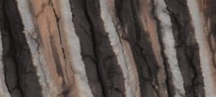 laguiole auswahl in mammut backenzhan