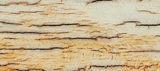 laguiole griff aus mammutelfenbein-kruste